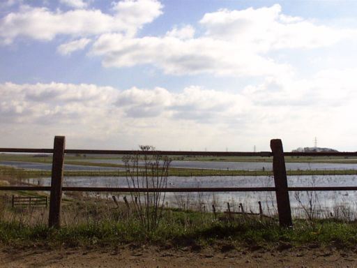 The Whittlesey Wash - man made flood plains to the North of the house next to the Bird Sanctuary